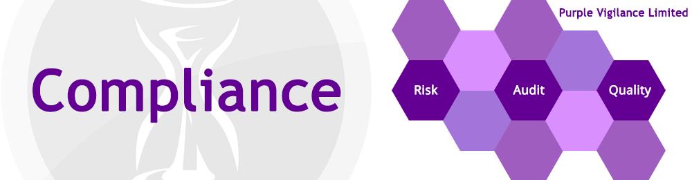 Purple Vigilance Limited